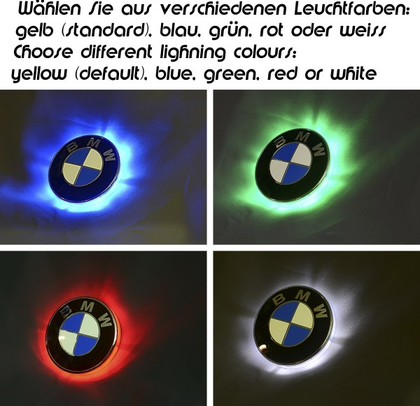 R1100RT/R1150RT LED Emblemblinker