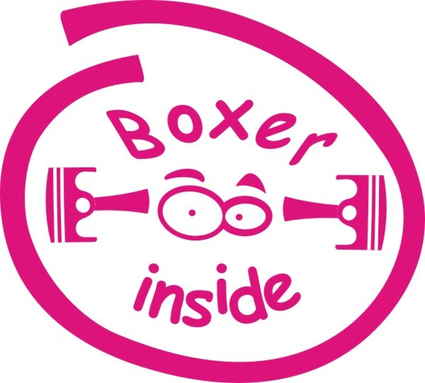 Boxer Inside Aufkleber Nr.3 in Wunschfarbe